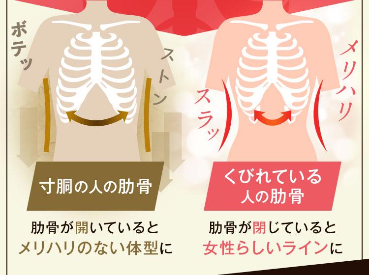 プリンセススリムのポイントは肋骨