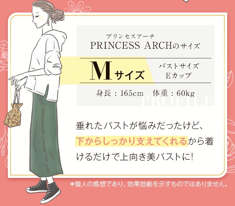 プリンセスアーチモデルm